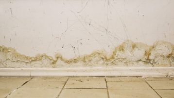 water marks and mold on wall in the interior of house